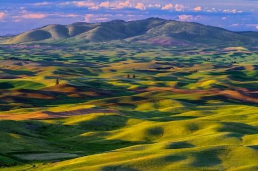 холмы в долине Палуза, Вашингтон, США