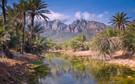 Йемен, остров Сокотра